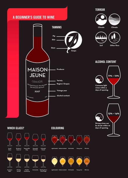 beginners guide wine