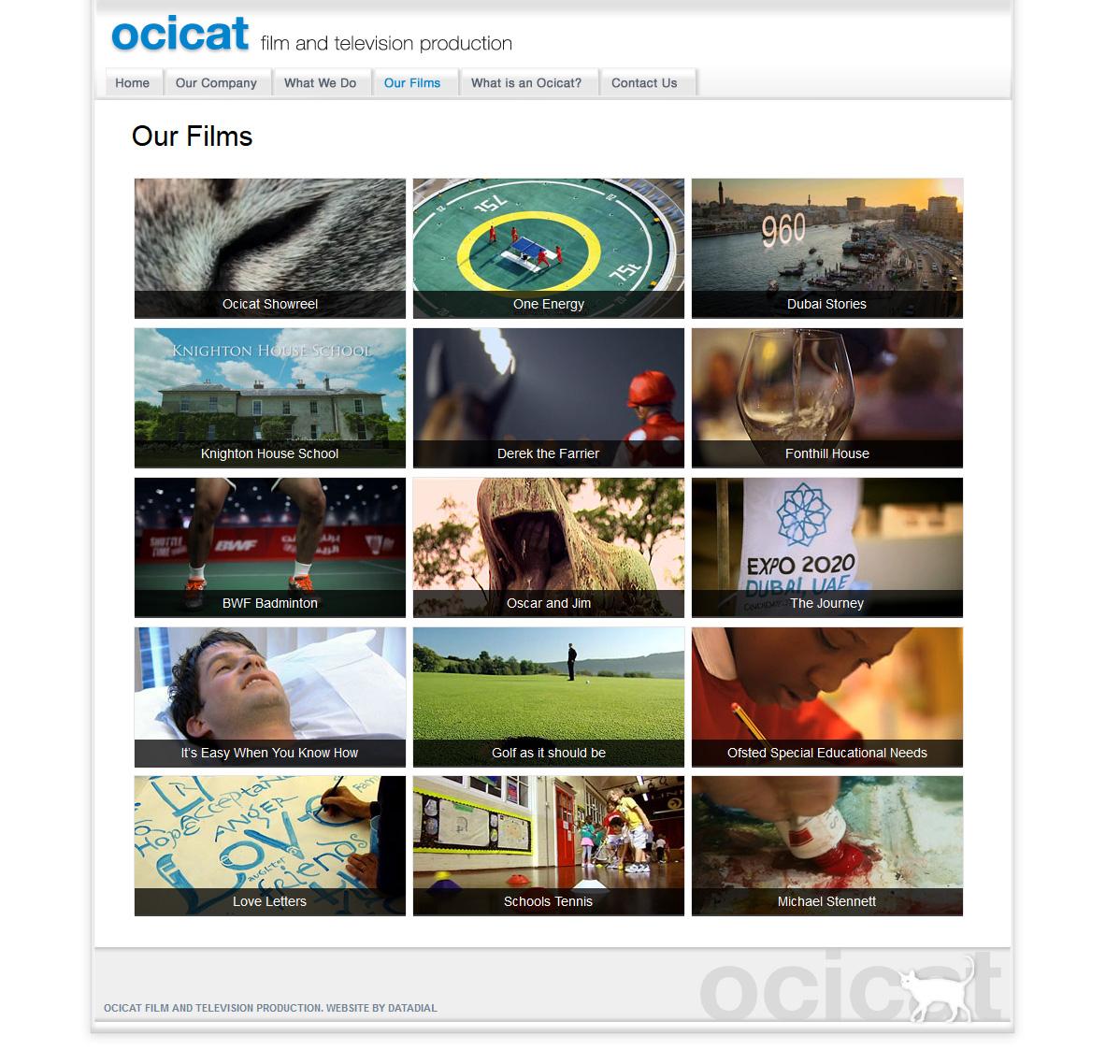 ocicat_01